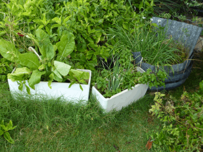 toilet tanks are environmentally friendly garden containers