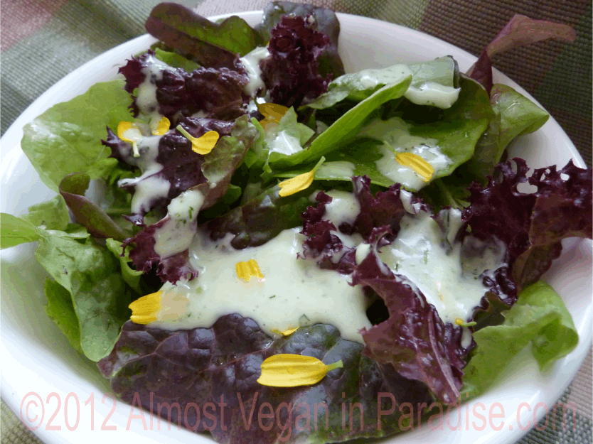 Vegan Recipe Creamy Dill Salad Dressing