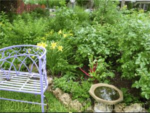 A purple bench, red Swiss chard, and birdbath in Lucinda Hutson's front yard garden